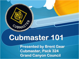 Cubmaster 101