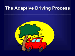 The Adapted Driving Process - University of South Carolina