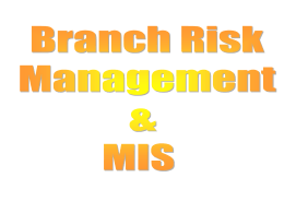 Branch Risk Management Presentation