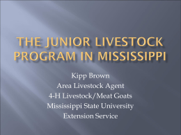 The Junior Livestock Program PowerPoint Presentation