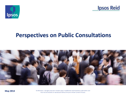 Perspectives on Public Consultations