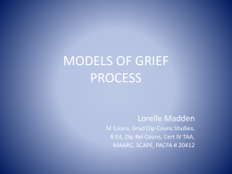 3-D MODEL OF GRIEF PROCESS
