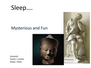 Sleep: Mysterious and Fun