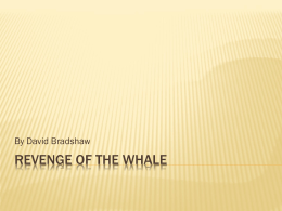 Revenge of the Whale powerpoint - David