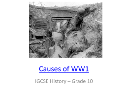 Causes of WW1 - WordPress.com