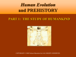 14.9 MB - Human Evolution and Prehistory, Second Canadian Edition