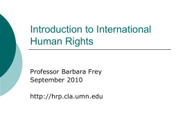 Introduction to International Human Rights 2010