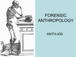 forensic anthropology 2013