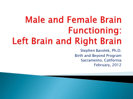Male and Female Brain Functioning: Left Brain vs Right Brain