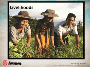 Livelihood presentation overview - PPT