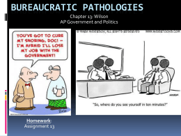 Bureaucratic Pathologies