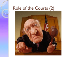 Role of the Courts (2)