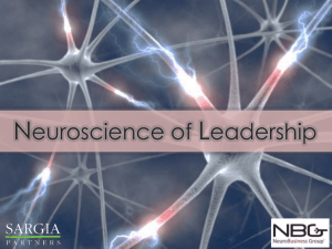 SARGIA-Neuroscience-of-Leadership-Capability