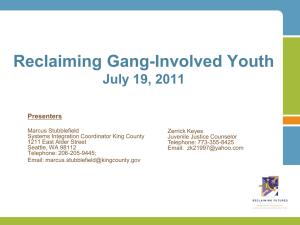 bloods street gang intelligence report