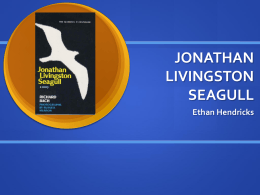 jonathan livingston seagull questions answers