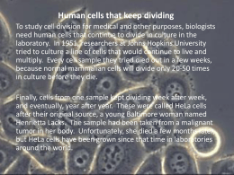 HeLa cells, development and human life spans of cells