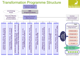 Item 6 - Transformation Programme Structure