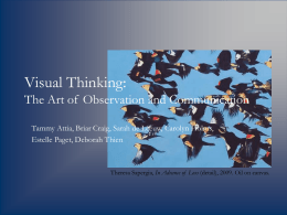Visual Thinking: The Art of Observation and Communication