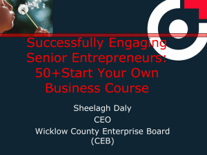 Wicklow County Enterprise Board