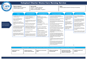 Vision and Strategy: - Apollo Nursing Resource