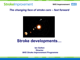 What is the Stroke Improvement Programme?