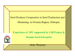 Local seed business seed conservator and seed