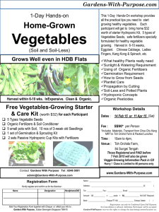 flyer_VegetableOrchids_1Day2015forfax