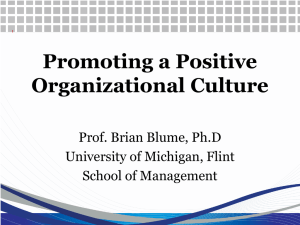 Promoting a Positive Organizational Culture