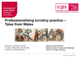 Rebecca David-Knight, Wales Scrutiny Programme Manager, CfPS