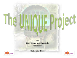 The Unique Project