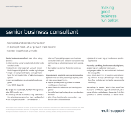 senior business consultant