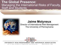 International Risk Management PPT
