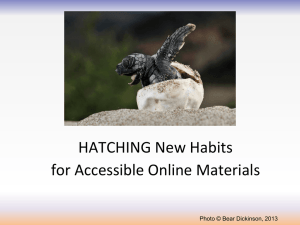 Hatching New Habits for Accessible Online Materials