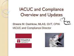 IACUC and Compliance Updates