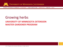 Growing Herbs - University of Minnesota Extension Service