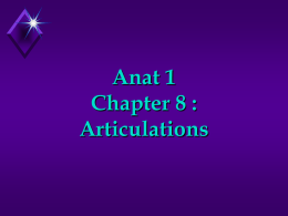 Chapter 8 : Articulations (pII)