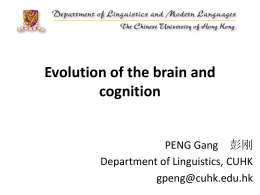 Evolution of the brain and cognition