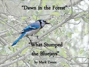 """Dawn"" & ""What Stumped"""