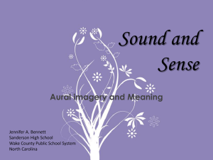 Aural Imagery: Sound and Sense Devices
