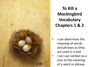 To Kill Mockingbird Vocabulary Chapters 1 & 2