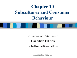 Chapter 10 Subcultures and Consumer Behaviour