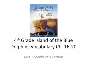 4th Grade Island of the Blue Dolphins Vocabulary Ch. 16-20