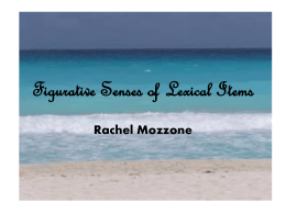 Figurative Senses of Lexical Items