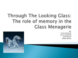 Through The Looking Glass: The role of memory in the Glass