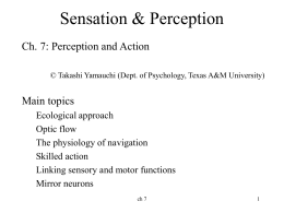 Ch 7 Perception and Action