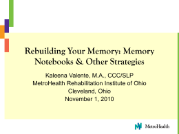 Memory Notebooks & Other Strategies