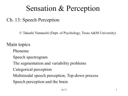 Ch 13 Speech Perception