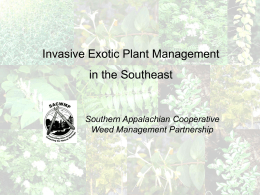 Invasive Exotic Plant Management in the Southeast