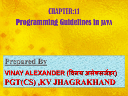xi_11_programming guidelines_ip