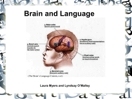Brain and Language